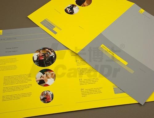 彩页印刷,宣传单,DM单,双胶纸